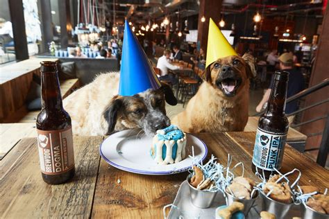 BrewDog to host 'pawties' for dogs in its bars • Beer Today