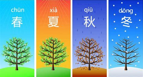 Common Chinese Words for Kids Chinese Made Easy for Kids